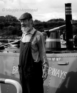 Laplander's skipper