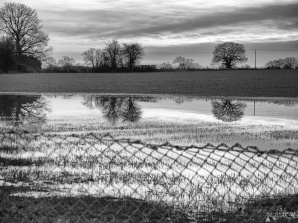Flooded field with fence