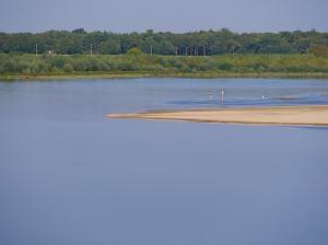 Loire dip