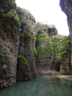 The bottom of the gorge