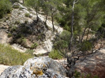 Top of a ravine