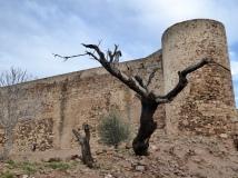 Inner bailey walls