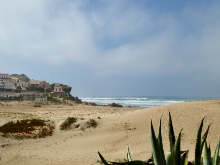 Agave on an Algarve beach