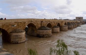 Rainy Roman bridge