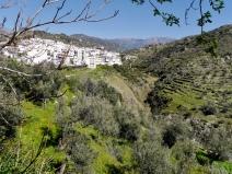R. Torrox valley